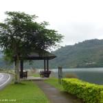 鯉魚潭-環潭步道2
