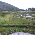 鯉魚潭-人工濕地