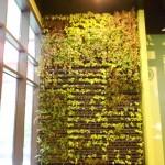 郭元益綠標生活館 植生牆