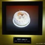 白木屋品牌文化館 2005水蜜桃之花