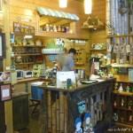 橄欖樹 餐飲咖啡廳 4