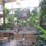 綠景咖啡區 5