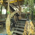綠景咖啡區 6