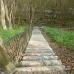 水庫登山步道
