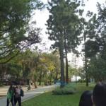 中正公園 1