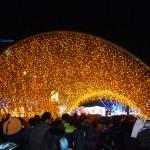 竹光產業燈區 1